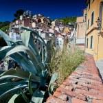 Riomaggiore, Cinque Terre, Italy — Stock Photo #31368235