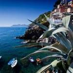 Riomaggiore, Cinque Terre, Italy — Stock Photo #31370053