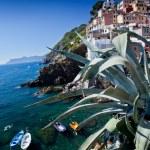 Riomaggiore, Cinque Terre, Italy — Stock Photo #38951325