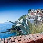 Riomaggiore, Cinque Terre, Italy — Stock Photo #38951335