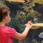 Girl in in oceanarium — Stock Photo