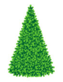 Tall and fluffy Christmas tree — Stock Vector