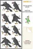 Puzzle visuel - trouver deux images identiques des corbeaux — Vecteur