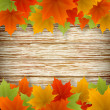 Abstract golden autumn frame from maple leaves on wood backgroun — Stock vektor