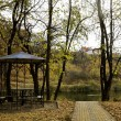 Gazebo among fallen leaves in autumn park — Stock Photo