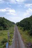 Railroad surrounded by trees stretches to the horizon — Stock Photo