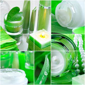 Spa ingredients and plants in tones of green — Stock Photo