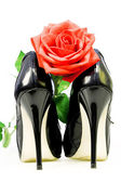 Lady shoes and red rose on a white background — Stock Photo