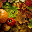 Colorful leaves and vegetables — Stock Photo