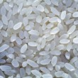 White selected rice grains — Stock Photo