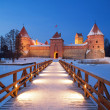 Trakai. — Stock Photo #13645691