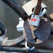 Love padlocks — Stock Photo #13760549