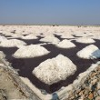 Salt works, Sambhar salt lake, Rajasthan, India — Foto Stock