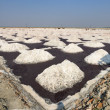 Salt works, Sambhar salt lake, Rajasthan, India - Stock Photo