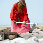 Salt works, Sambhar salt lake, Rajasthan, India — Stock Photo #21151767