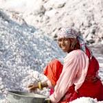 Salt works, Sambhar salt lake, Rajasthan, India — Stock Photo #21151801