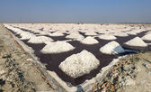 Salt works, Sambhar salt lake, Rajasthan, India — Stock Photo