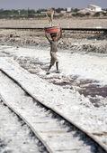 Salt works, Sambhar salt lake, Rajasthan, India — Stock Photo