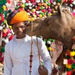 Постер, плакат: Traditional camel decoration competition at camel mela in Pushka