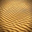 Sand and dunes of the Thar Desert. — Stock Photo