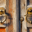 Stock Photo: Old brass door handles