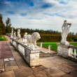 Museum-Estate of Arkhangelskoye. — Stock Photo #36938139
