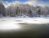 Lake of the Woods - winter landscape — Stock Photo