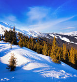 Ski slope near Zell am See, Austrian Alps — Stock Photo