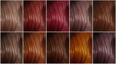 Shades of colored hair — Stock Photo