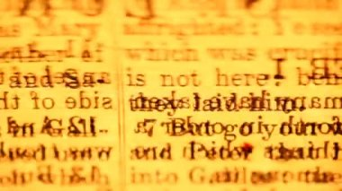 Close up of Holy Bible pages — Stok video