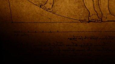 Vitruvian Man by Leonardo Da Vinci from 1492 — Stock Video