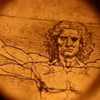 Vitruvian Man by Leonardo Da Vinci from 1492 — Stock Video