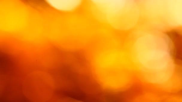 Abstrait — Vidéo