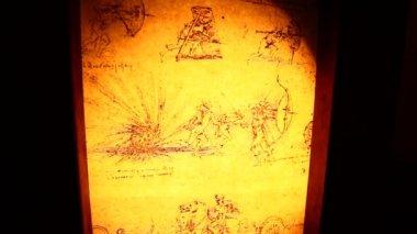 Anatomia de vinci Leonardo da — Vídeo stock