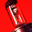 Stock Photo: Tungsten Bulb