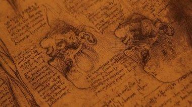 解剖艺术 — 图库视频影像