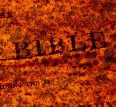 神圣的圣经 — 图库照片