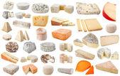 Various cheeses — Stock Photo