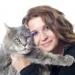 Maine coon cat and woman - Stock Photo