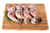 Four quails — Stock Photo