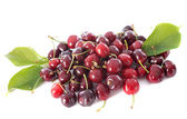 Cherries and leaf — Stock Photo
