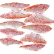 Fillets of goatfish — Foto de Stock
