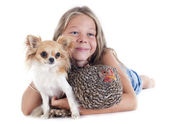 Child, dog and chicken — Stock Photo