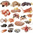Stock Photo: Seafood and shellfish