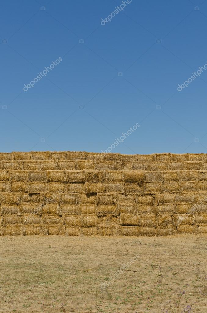 A stack of hay bales, vertical shot — Stock Photo #12536026