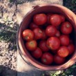 Tomato bucket - Stock Photo