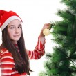 Christmas decoration — Stock Photo #14705685