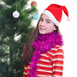 Stock Photo: Christmas portrait