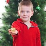 Christmas portrait — Stock Photo #14740355