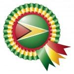 Guyana rosette flag — Stock Vector